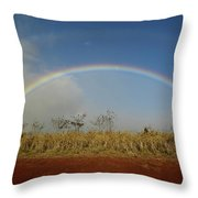 Double Rainbow Over A Field In Maui Throw Pillow