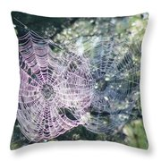 Double Webbed Throw Pillow