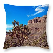 Doubletop Landscape Throw Pillow
