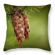 Douglas Fir Cones Throw Pillow