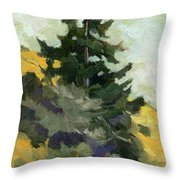 Douglas Fir In Washington Throw Pillow