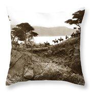 Douglas School For Girls At Lone Cypress Tree Pebble Beach 1932 Throw Pillow