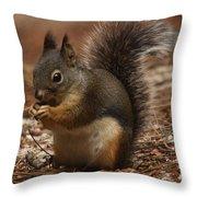Douglas's Squirrel Throw Pillow