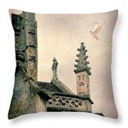 Dove Landing On Church Throw Pillow