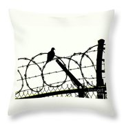 Dove Mourning Throw Pillow