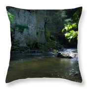 Dowlin Forge Park - Brandywine Creek Throw Pillow