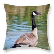 Down Around The Pond Throw Pillow