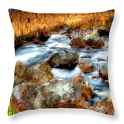 Down By The Brook Throw Pillow