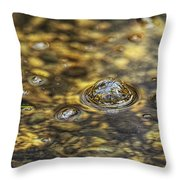 Down By The Bubbling Spring Throw Pillow