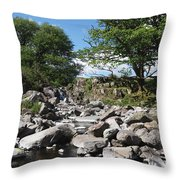 Down From The Mountains Throw Pillow