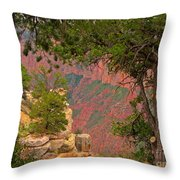 Down Into The Grand Canyon Throw Pillow