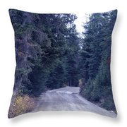 Down Nature's Highway Throw Pillow