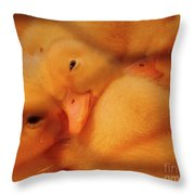 Down Of Gold Throw Pillow