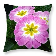 Down On Primrose Lane Throw Pillow