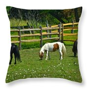 Down On The Ranch Throw Pillow