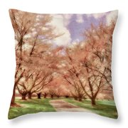 Down The Cherry Lined Lane Throw Pillow
