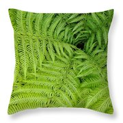 Down The Fernhole Throw Pillow