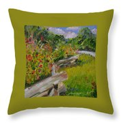 Down The Natchez Trace Throw Pillow