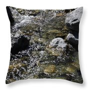 Down The River Throw Pillow