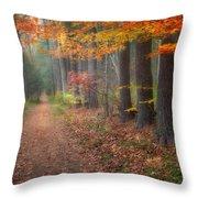 Down The Trail Throw Pillow