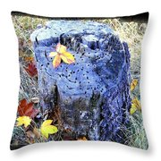 Down To Earth Beauty Throw Pillow