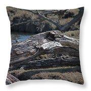 Down Tree Along Creek Throw Pillow