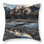 Downed Trees Throw Pillow