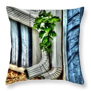 Downspout Throw Pillow by Doc Braham