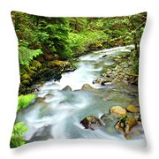 Downstram In The Olympics Throw Pillow