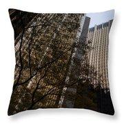 Downtown Autumn Throw Pillow
