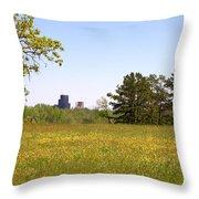 Downtown View Throw Pillow