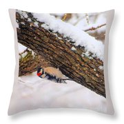 Downy Looking For Bugs Throw Pillow
