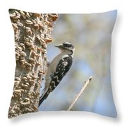 Downy Pause Throw Pillow