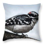 Downy Woodpecker 3 Throw Pillow