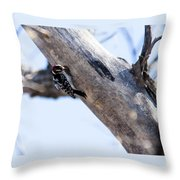 Downy Woodpecker Home Throw Pillow