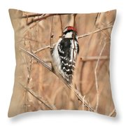 Downy Woodpecker In Brush Throw Pillow