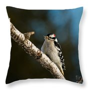 Downy Woodpecker Pictures 25 Throw Pillow