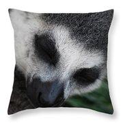 Dozing Throw Pillow