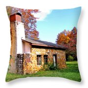 Dr Cannon's House Throw Pillow