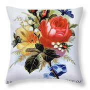 Dr Morse's Yellow Dock Root Syrup Throw Pillow