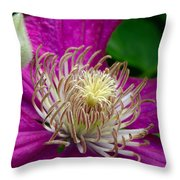 Dr. Seuss Flower No. 7636 And Bud Throw Pillow