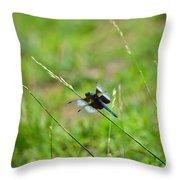 Dragon Fly 5 Throw Pillow