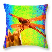Dragon Fly- Creative Throw Pillow