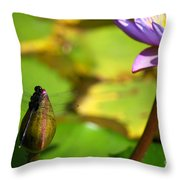Dragon Fly On Bud And Water Lily Horizontal Number One Throw Pillow