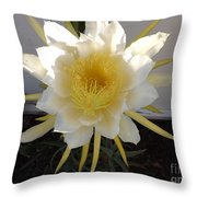 Dragon Fruit Bloom In The Morning Throw Pillow
