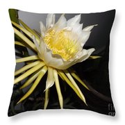 Dragon Fruit Blossom II Throw Pillow