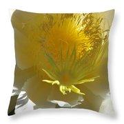 Dragon Fruit Blossom Iv Throw Pillow