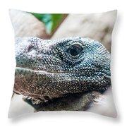 Dragon Lizzard Portrait Closeup Throw Pillow