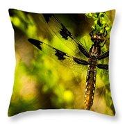 Dragonfly - Dragon Waiting Throw Pillow