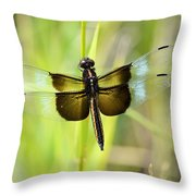 Dragonfly 9249 Throw Pillow